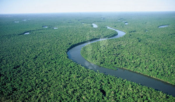 Amazonia National Park and The Amazon River