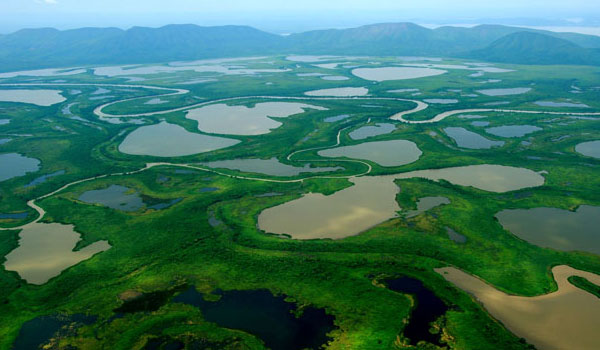 Pantanal in the center of the country